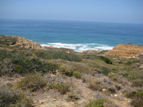 On the trail down to Torrey Pines Beach