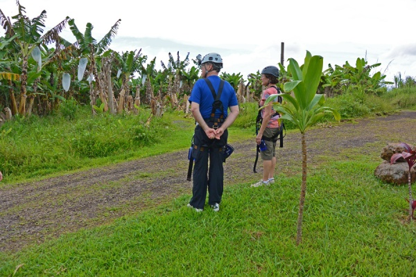 Observing the banana trees along the zip line route.