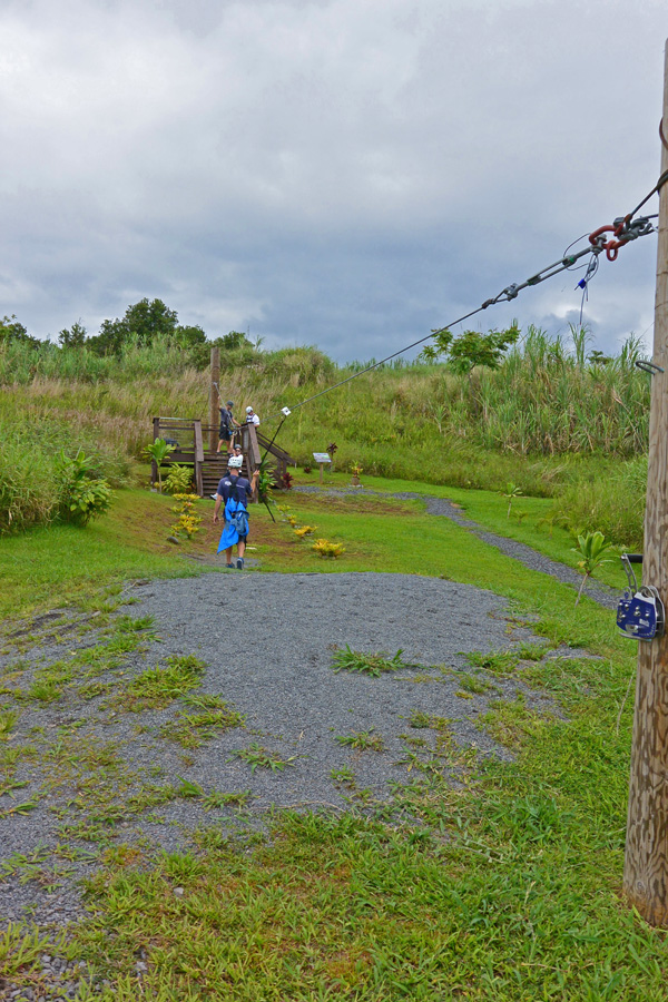 The training zip line, a little zip before moving on to the long ones.