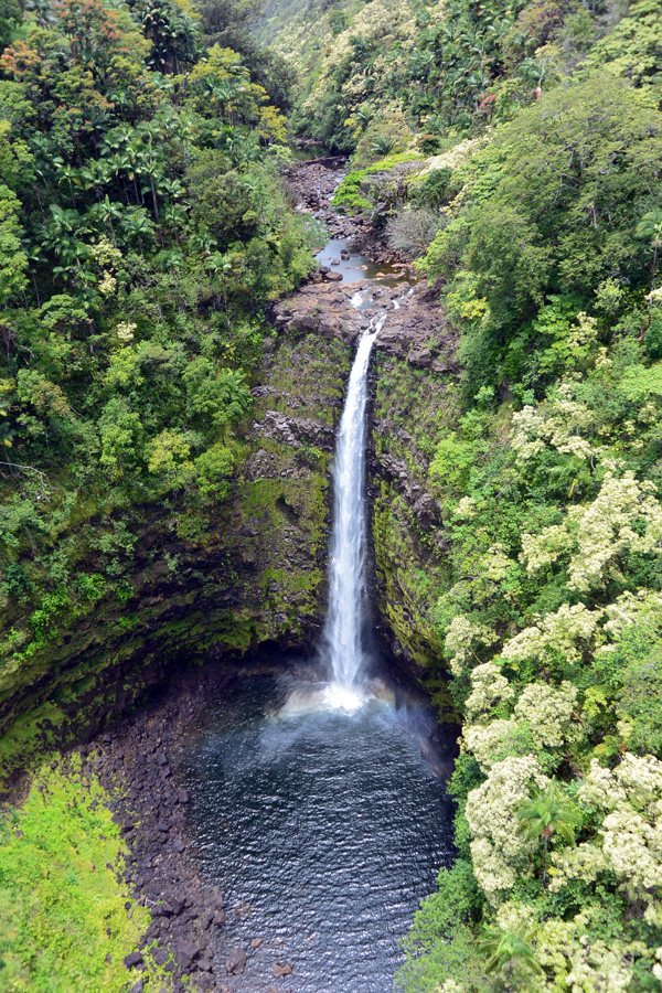 Akaka Falls as seen from the zip line.
